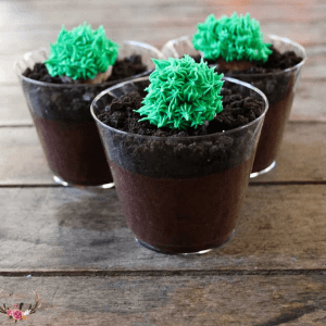 Cactus pudding cups from Ever After in the Woods.